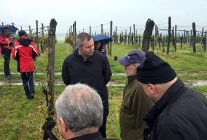 Židan na ogledu škode v vinogradu