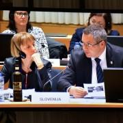 Židan in Strniša na Svetu EU